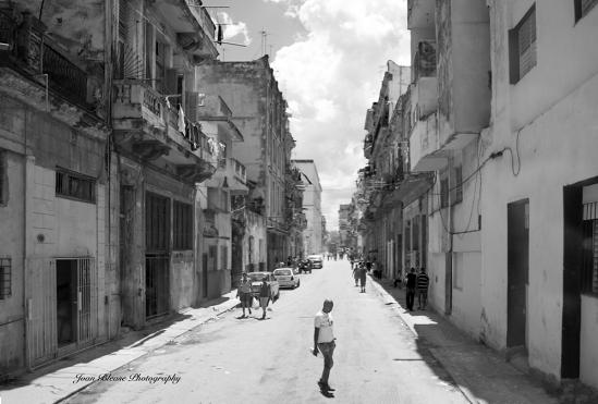 Cuba Street 1