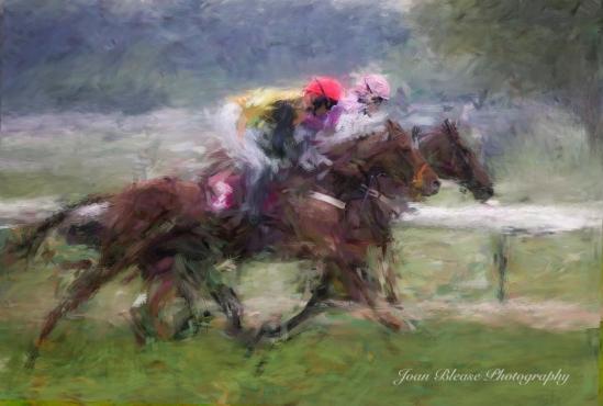 HORSE RACE 2