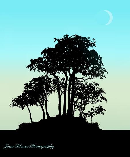 morning-moon